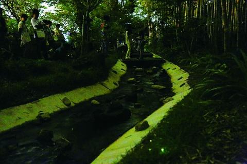 ほたる鑑賞会開催 JFE・知多 「環境に優しい工場」アピール