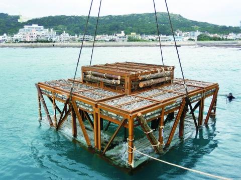 神鋼建材、木材活用増殖礁「魚類増加を確認」